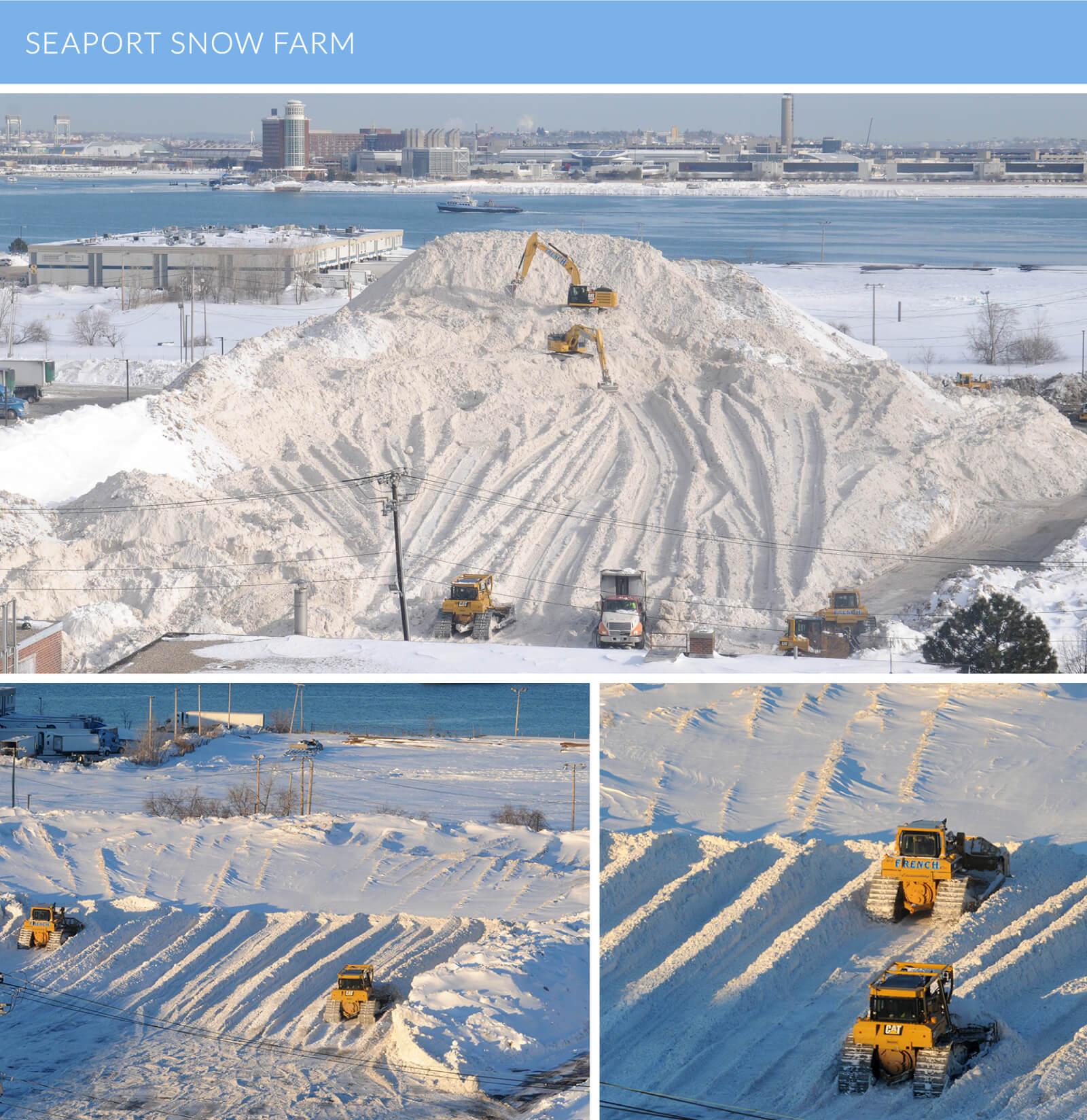 Seaport Snow Farm